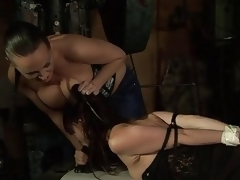 Mandy Bright Mite Together with Entice A difficulty D...