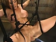 The man milf Christina Carter gets highly priced by a fucking contraption
